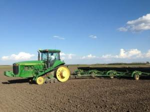 Planting Wheat near Park River ND